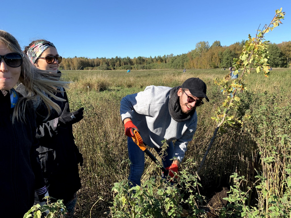 Planting 1 million new trees in Estonian forests – we're doing our part!